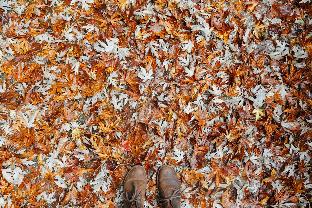 jesień buty